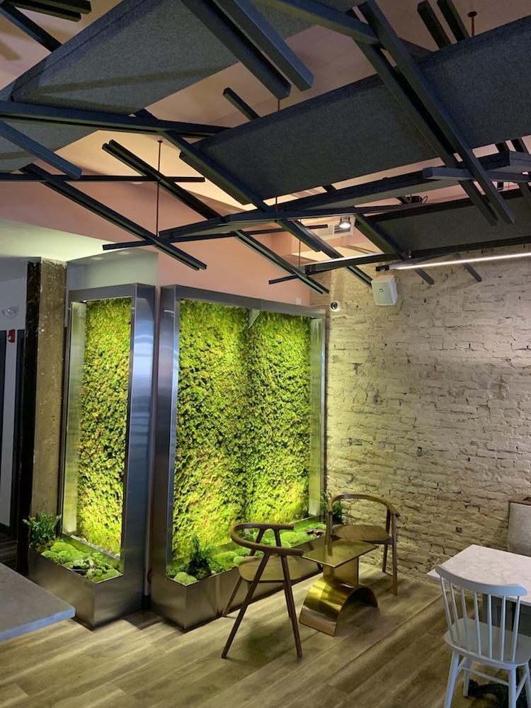 Verdure - LIVE Moss Wellness Wall