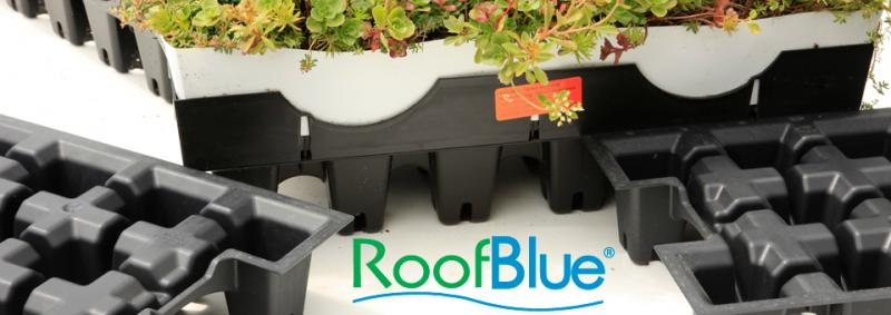 RoofBlue Riser | LiveRoof Hybrid Green Roofs