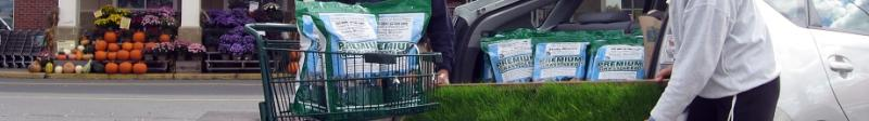 Simple steps to a beautiful lawn with Pearl's Premium grass seed » Lawn and Grass Seed for Ultra Low Maintenance Lawns: Pearl's Premium