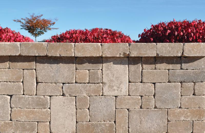 Ammon's Wall® Mixed