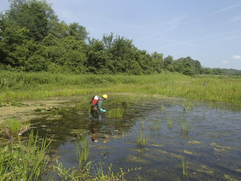 Civil & Environmental Consultants, Inc. Ecological Services