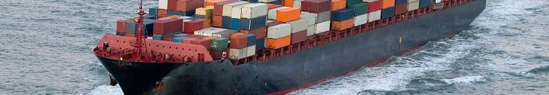 Shipments & Trucking Services   Exporting   Kiln Drying