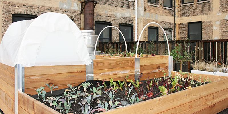 Raised Bed System