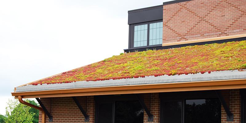 Edge Restraint | Green Roof Products | Green Roof Solutions