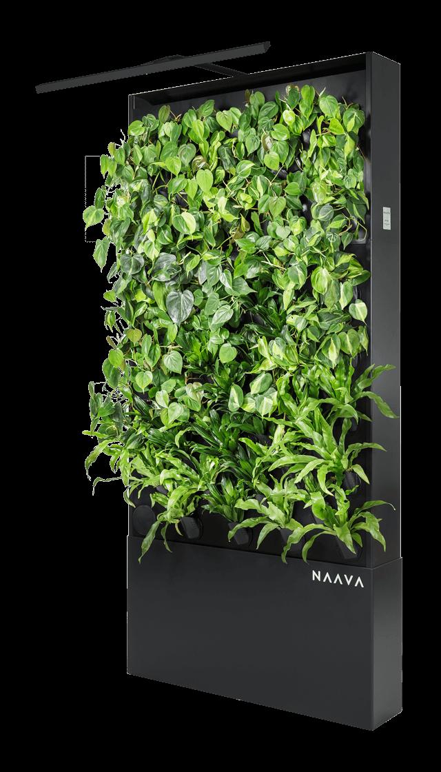 Naava One Slim
