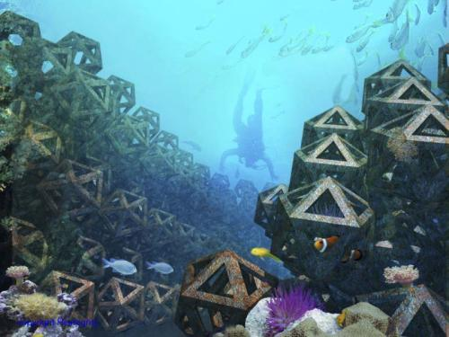 Artificial Reef - C6XTY