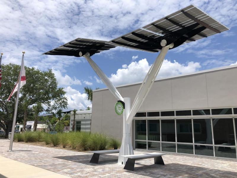 solar tree Spotlight Solar