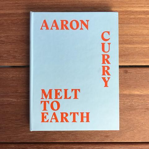 Aaron Curry: Melt to Earth – deCordova | Store