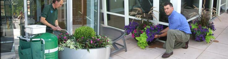Interior Exterior Plantscape Maintenance