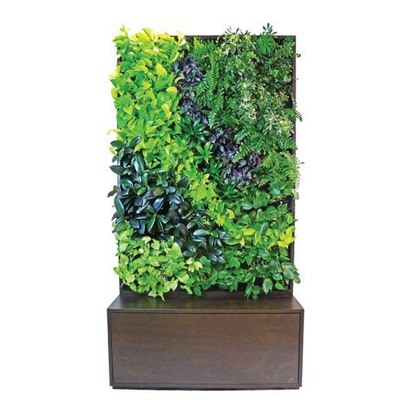 Designer Series | GSky Living Green Walls