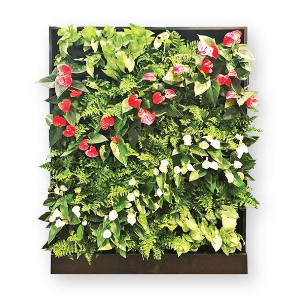 Designer Series | GSky Living Green Walls
