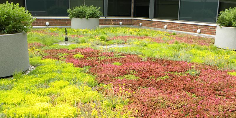 Filter Fabric & Drainage | Green Roof Solutions