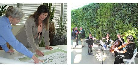 Green Wall Design & Consulting | Ambius