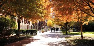 Pratt Institute | The Institute