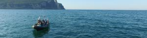 Wave energy converter | Turbine system | Spain