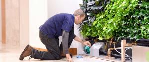 PRO WALL Maintain | GSky Living Green Walls