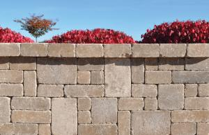 Ammon's Wall® Mixed