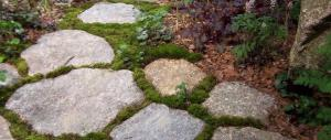 New England Fieldstone Flagging and Steppers