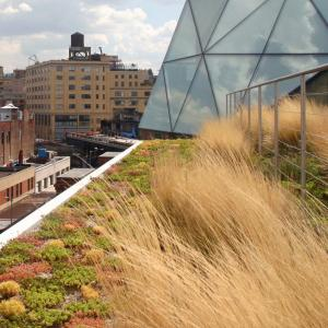 Edging Applications – Green Roof | Permaloc Corporation