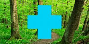 Health Benefits of Nature | asla.org