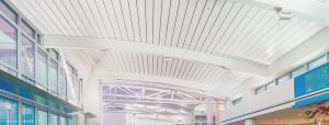 Wideck Long Span Roof and Floor Deck Ceiling Systems