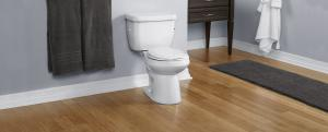 Sentinel™ 1.28 GPF - Round Toilet – Niagara Conservation