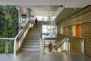 University Of Ottawa Ottawa, ON  - Projects - Nedlaw Living Walls