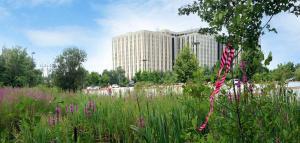 Environmental Consulting - Allen & Major Associates, Inc.