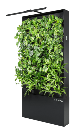 Naava One Slim
