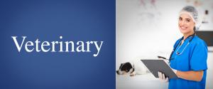 SBA Loans and SBA Funding by SBA Loan Group   SBA Veterinary Loans   SBA Loan Group