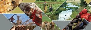 | College of Agricultural Sciences | Oregon State University