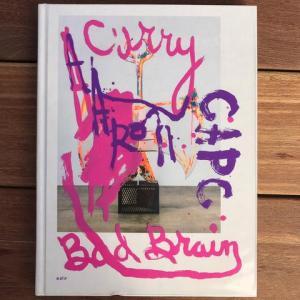 Aaron Curry: Bad Brain – deCordova | Store
