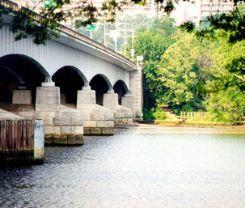 Theodore Roosevelt Bridge