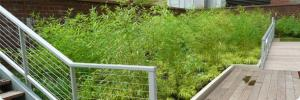 Greentop - Green Roof Planters