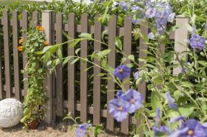 Fences & Blinds