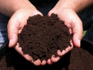 Grade A Compost