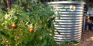 Water Storage Products | Green Roof Solutions